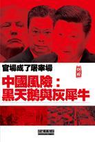 《中國風險:黑天鵝與灰犀牛》