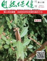 自然保健月刊423期  鬼箭羽