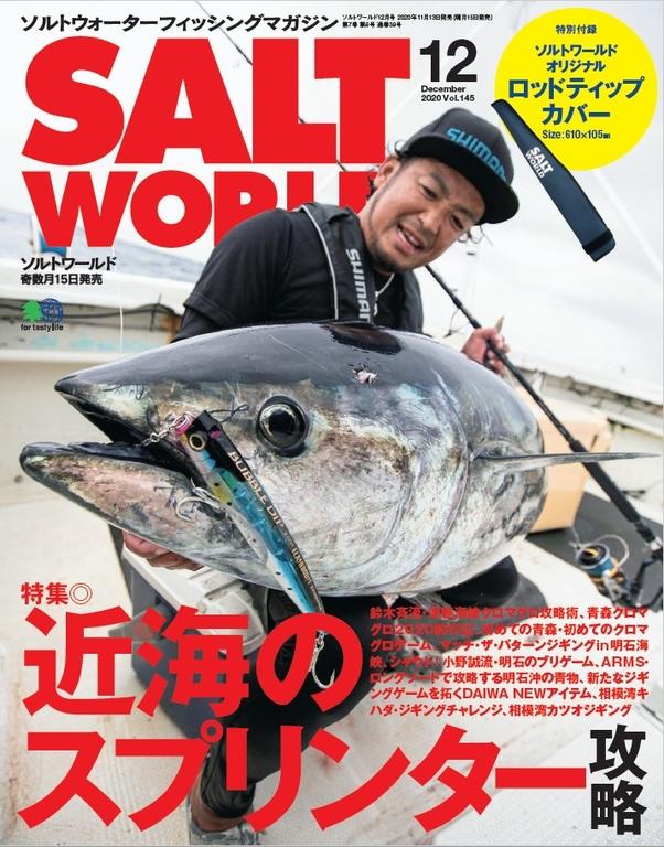 SALT WORLD 2020年12月號 Vol.145 【日文版】